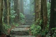 熊野古道~踏進日本人嚮往的心靈聖地
