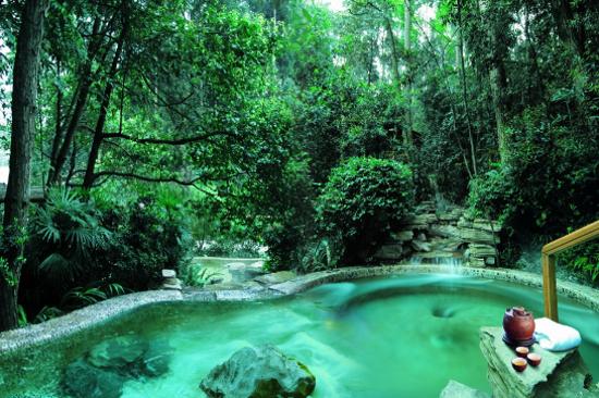 紅珠森林溫泉