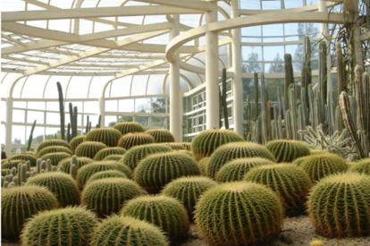 萬石植物園