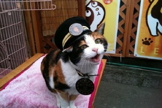 和歌山電鐵貓站長Nitama車站