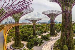 公主郵輪~藍寶石公主號 新加坡(Gardens by the Bay、S.E.A.海洋館)、 馬來西亞(吉隆坡、檳城)、泰國(布吉) 7天豪華郵輪假期(RASPS07)