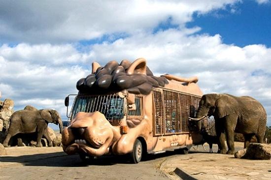 九州自然動物公園非洲Safari