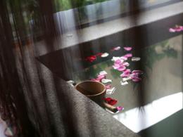 華信航空【台中日光溫泉會館】推廣碼「GP977」每位勁減$200│客房皆附湯池,房內獨享美人湯│台中自由行套票3-31天