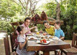 【新加坡動物園連野趣早餐】新加坡自由行套票3-14天