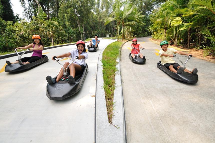 【高速下滑車Skyline Luge X 空中吊椅體驗】聖淘沙人氣熱門活動 │新加坡自由行套票3-31天
