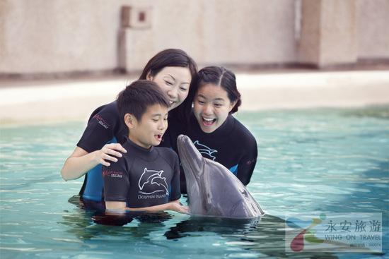 【海豚探索連水上探險樂園門票】海豚全接觸 │新加坡自由行套票3-31天
