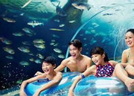【聖淘沙名勝世界水上探險樂園一日電子門票 】│新加坡自由行套票3-31天
