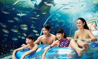 【聖淘沙名勝世界水上探險樂園一日電子門票 】必玩!和2萬隻熱帶魚群一起共遊!│新加坡自由行套票3-31天