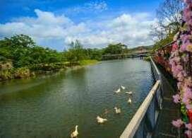 【名護自然動植物公園】沖繩自由行套票5-31天
