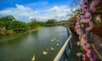 【名護自然動植物公園】日本唯一動植物園│包pocket wifi租借服務│沖繩自由行套票 3-31天