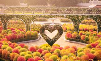 【EVERLAND愛寶樂園】韓國最大主題遊樂園 | 首爾自由行套票3-31天