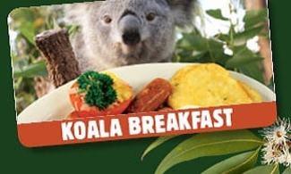 【悉尼野生動物園】和樹熊一齊食早餐   悉尼自由行套票4-31天