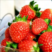 【愛草莓無限吃一天團】首爾自由行套票5-31天