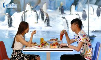【企鵝主題酒店】我要同企鵝食早餐│包長隆帝企鵝餐廳自助早餐│金光飛航│珠海自由行套票2-7天『來回澳門氹仔碼頭 』