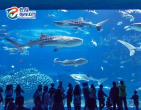 【親子同樂】鯨鯊到底有幾大?!│長隆主題酒店+門票│2人同行│金光飛航│珠海自由行套票2-7天~『來回澳門氹仔碼頭 』