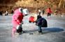 楊平冰魚節(1月8日至2月8日出發團隊適用)