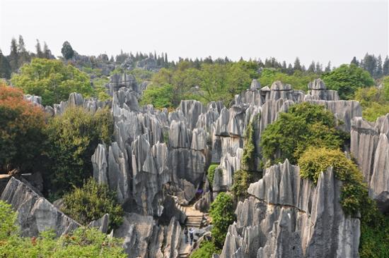 石林風景區