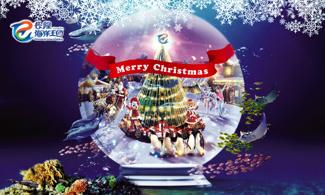 【又到聖誕】包海洋王國門票│長隆主題酒店│金光飛航/噴射飛航│珠海自由行套票2-7天~『來回澳門氹仔/外港碼頭 』