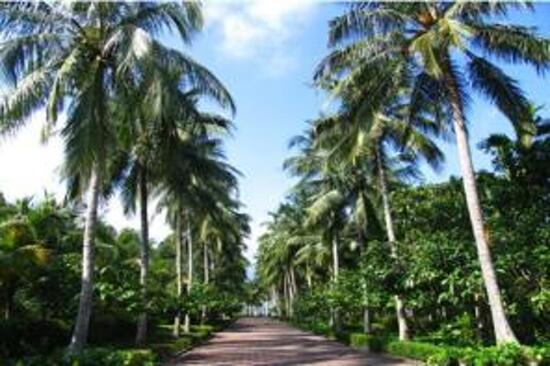 興隆熱帶植物園