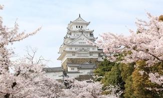 【世界遺產 ‧ 姬路城】日本最美麗的城堡之一│包pocket wifi租借服務│大阪自由行套票3-31天