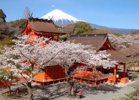【世界遺產富士山一日遊】 | 東京自由行套票5-31天