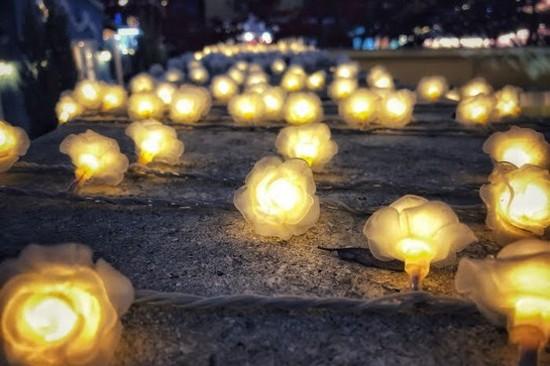 小普羅旺斯村Lighting Festival