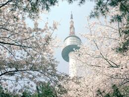 【預留機位】新增2019年春季機位 | 首爾自由行套票5天