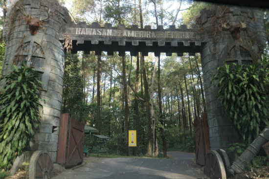 野生動物園