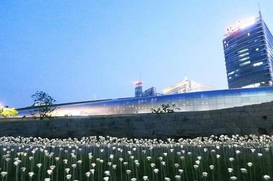 東大門設計廣場(限定LED玫瑰花海)