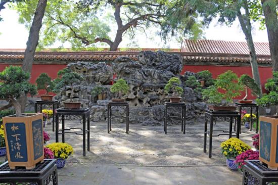 慈寧宮後花園