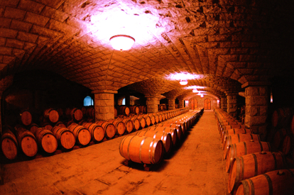 張裕葡萄酒酒窖