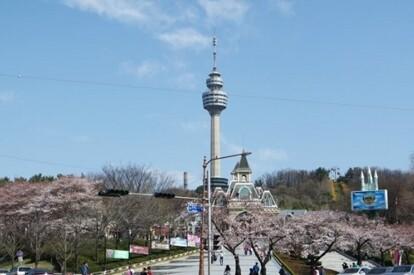 83 TOWER觀景臺