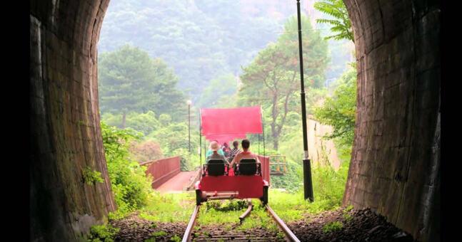 【季節限定親子遊】摘草莓、晨靜樹木園、江村鐵路自行車一天遊