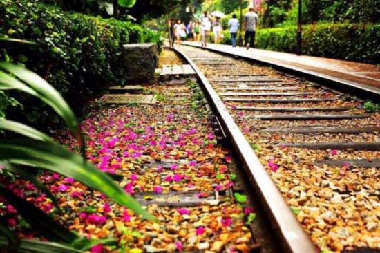 鐵路文化公園