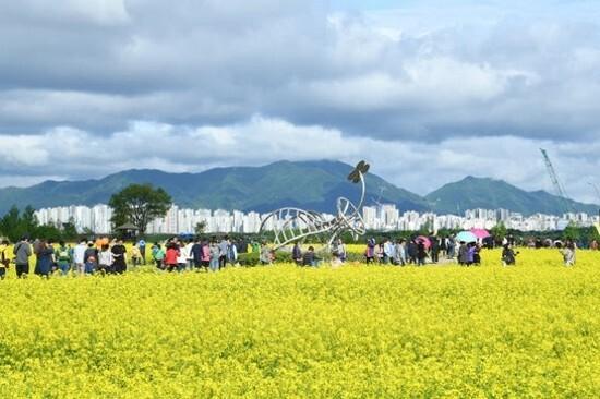 《增遊》九里漢江公園(賞油菜花註1) (4月27日至5月12日出發團隊適用)