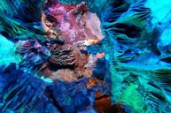 世界溶洞奇觀~紫雲仙境