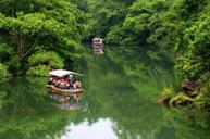 中國四大猴山~廣西龍虎山