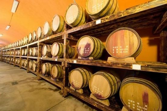 坡州山葡萄農園