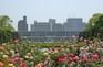 廣島平和公園