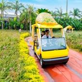 【沖繩超人氣景點一天團】沖繩自由行套票5-31天