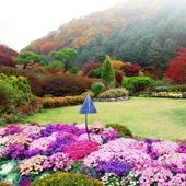 【浪漫之旅一天團】首爾自由行套票5-31天