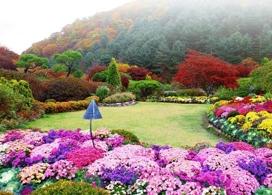 【浪漫之旅一天團】首爾自由行套票3-14天