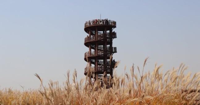 韓劇 《男朋友》拍攝地: 始興泥灘生態公園、松月洞彩繪童話村、松島中央公園、光明黃金洞窟一天遊