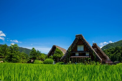 Japan Shirakawa-go summer 日本 白川鄉 (春天)