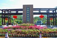 臨春嶺森林公園