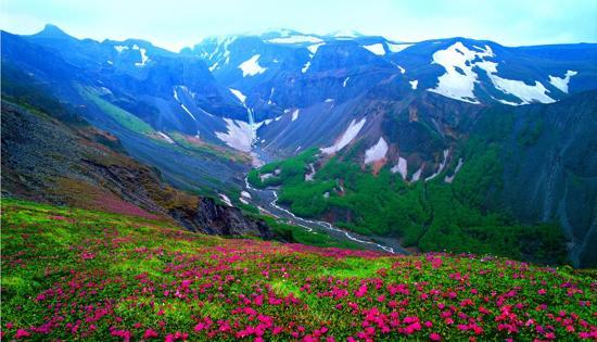 6月20日至10月10日出發增遊長白山花海