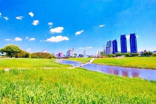 太和江大公園
