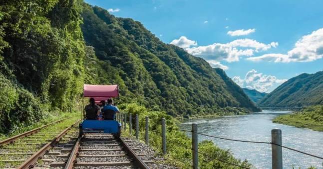 【首爾人氣新路線】江村鐵路 x 南怡島 x 晨靜樹木園 一日遊