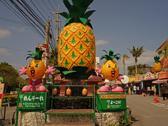 名護菠蘿園