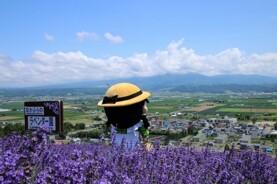 北海道 夏日親子5天之旅《出發日期:7月15日,8月5,23日》